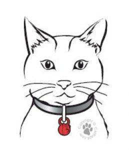Kattenluik met magneet