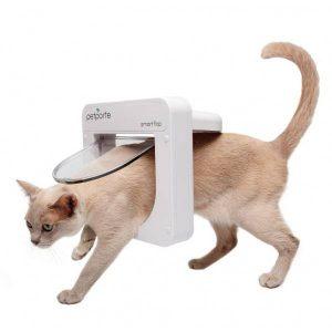 kattenluik bestellen