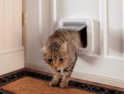 Kattenluik binnendeur